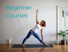 Beginner Courses